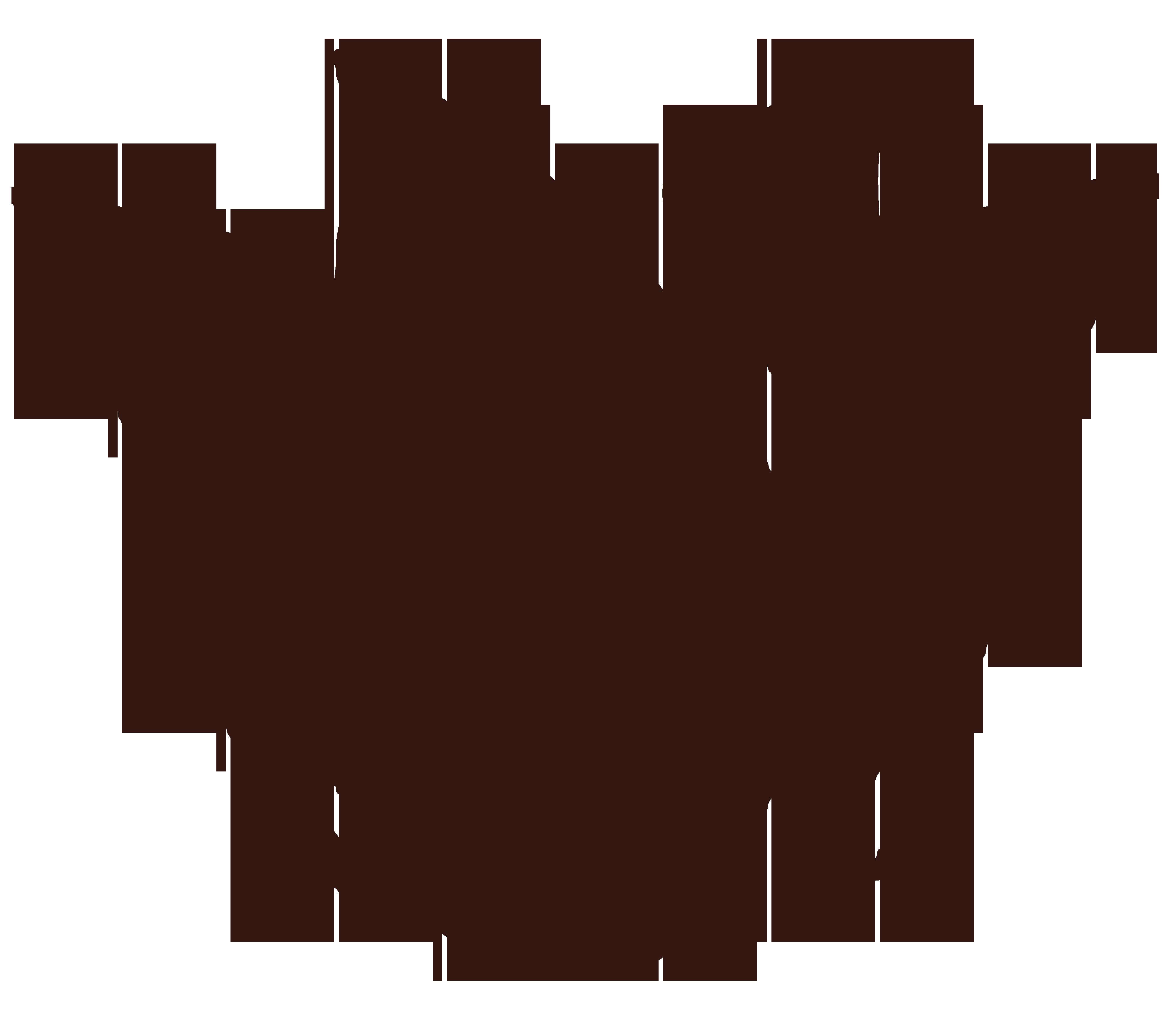 Flower Child Remedies flower logo
